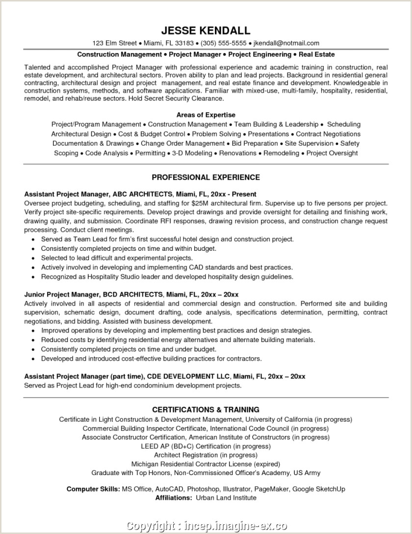 The Best 2019 Project Manager Resume Example