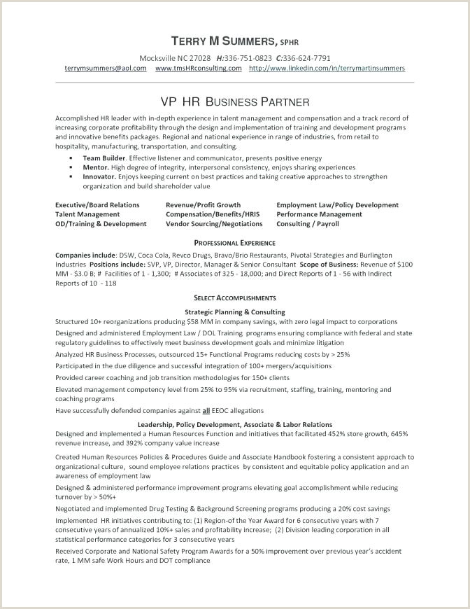 Luxury Consulting Business Plan Template Fresh Best