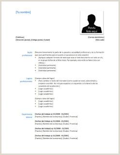 Copia De Curriculum Vitae Para Rellenar Imprimir Curriculum Vitae Baratos Fotocopias Baratas
