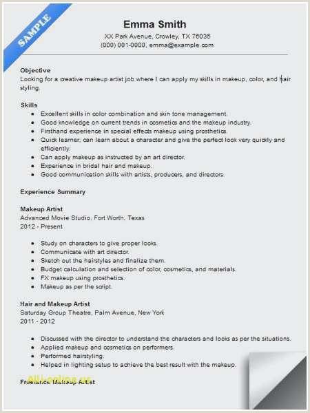 Creative Director Resume Sample the Perfect Resume Template – Salumguilher
