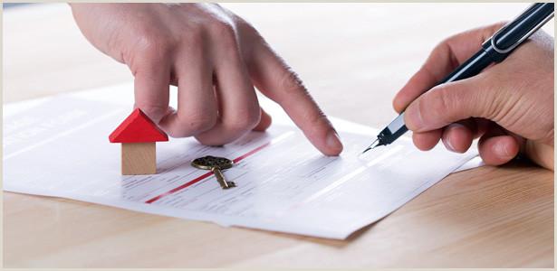 Tenant Letting Checks Loans and Credit