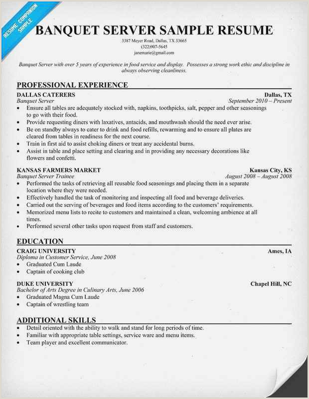 Culinary Arts Resume Free Collection 59 Server Resume Model