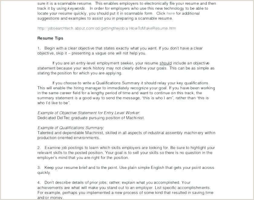 Resume Summary for Students Free Executive Summary for