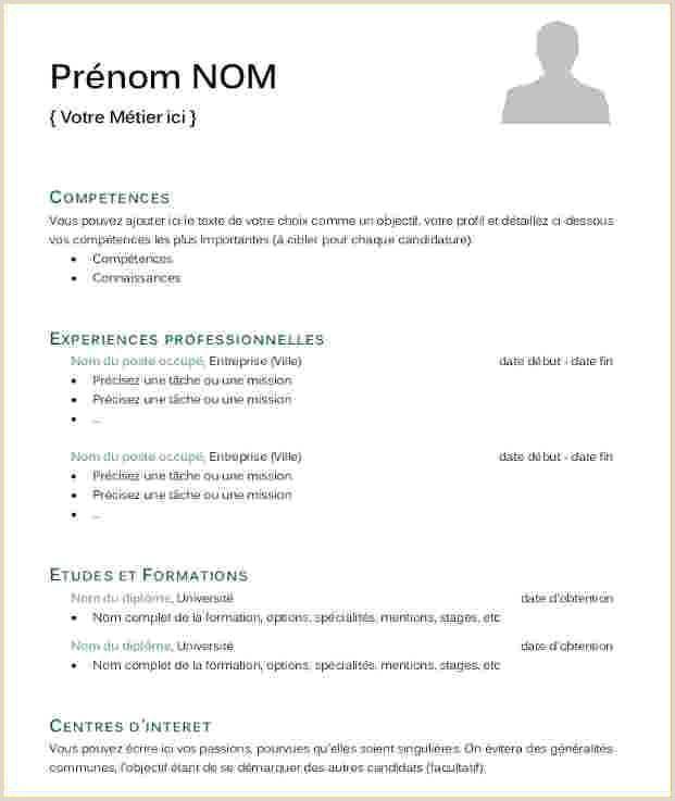 Curriculo Em Texto Simples 12 Model De Cv Simple Gratuit
