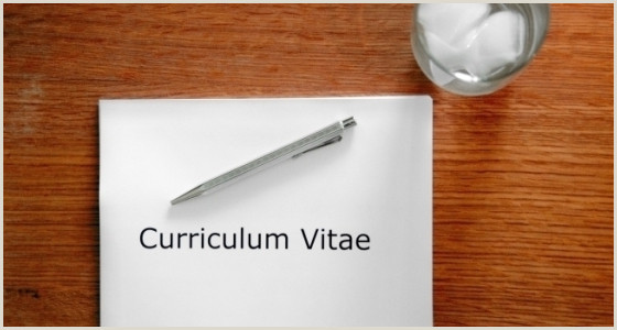 Curriculo Pronto Simples Baixar 6 Modelos De Curriculum Vitae Escolha O Cv Certo Para Cada