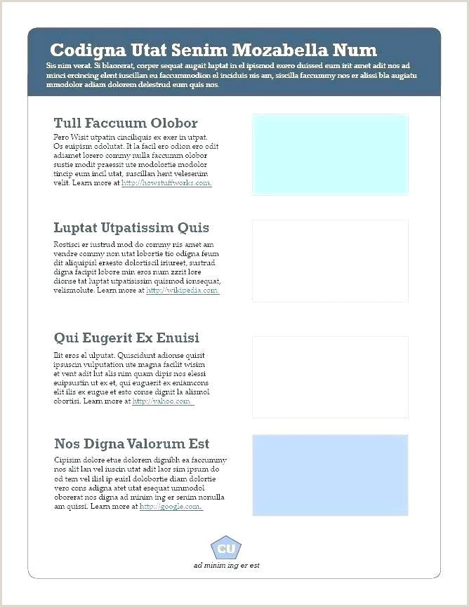 curriculum document template