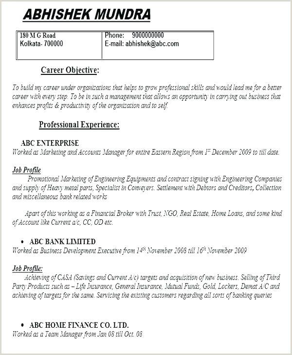 curriculum vitae resume template – bityar