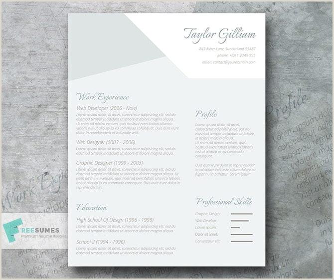 30 mod¨les de CV imprimables gratuits pour obtenir un emploi