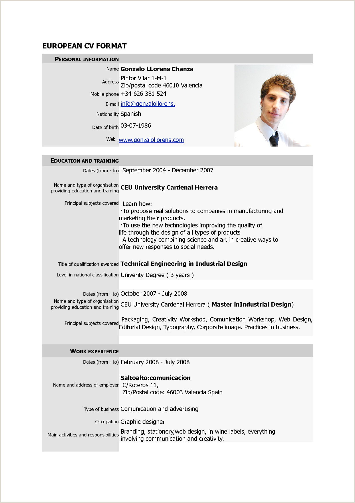 Cv Examples In Pdf Example one page CV pdf