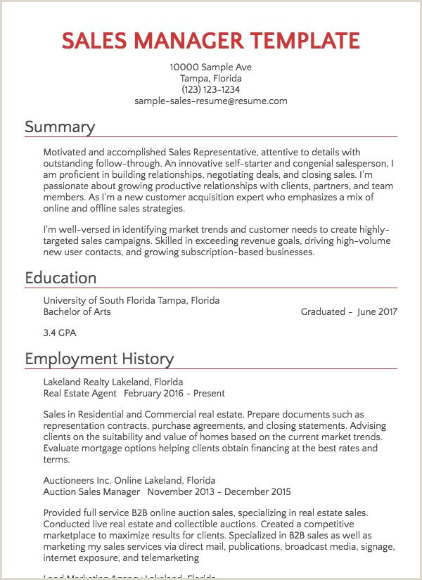 Cv Template Student Job