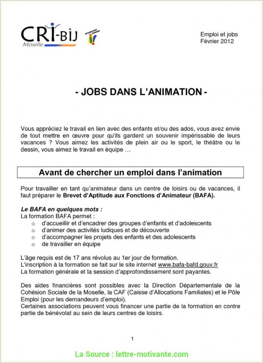 Original Lettre De Motivation Simple Vendeur Exemple Cv