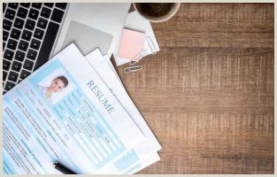 Curriculo Simples Para Primeiro Emprego Habilidades No Currculo Veja O Preencher E Outras Dicas