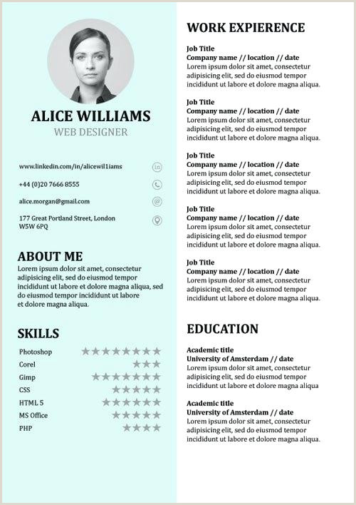 Curriculo Simples Word Download Resume Template Word Free Cv Template Word Document Download