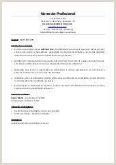 Curriculo Simples Word Jovem Aprendiz Livro Cfess Servi§o social Direitos sociais E