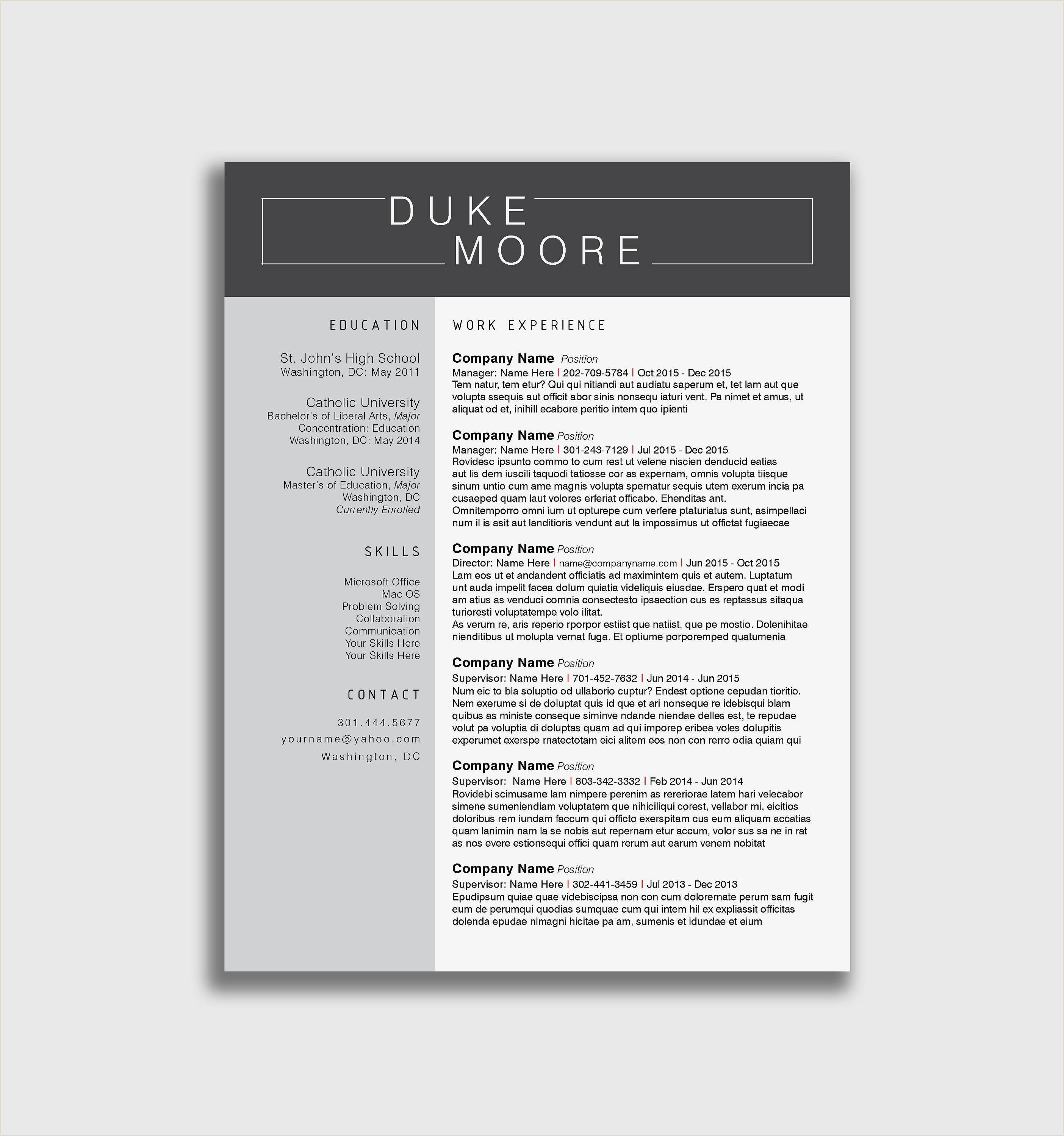 Sample Curriculum Vitae English Pdf Valid Sample Resume