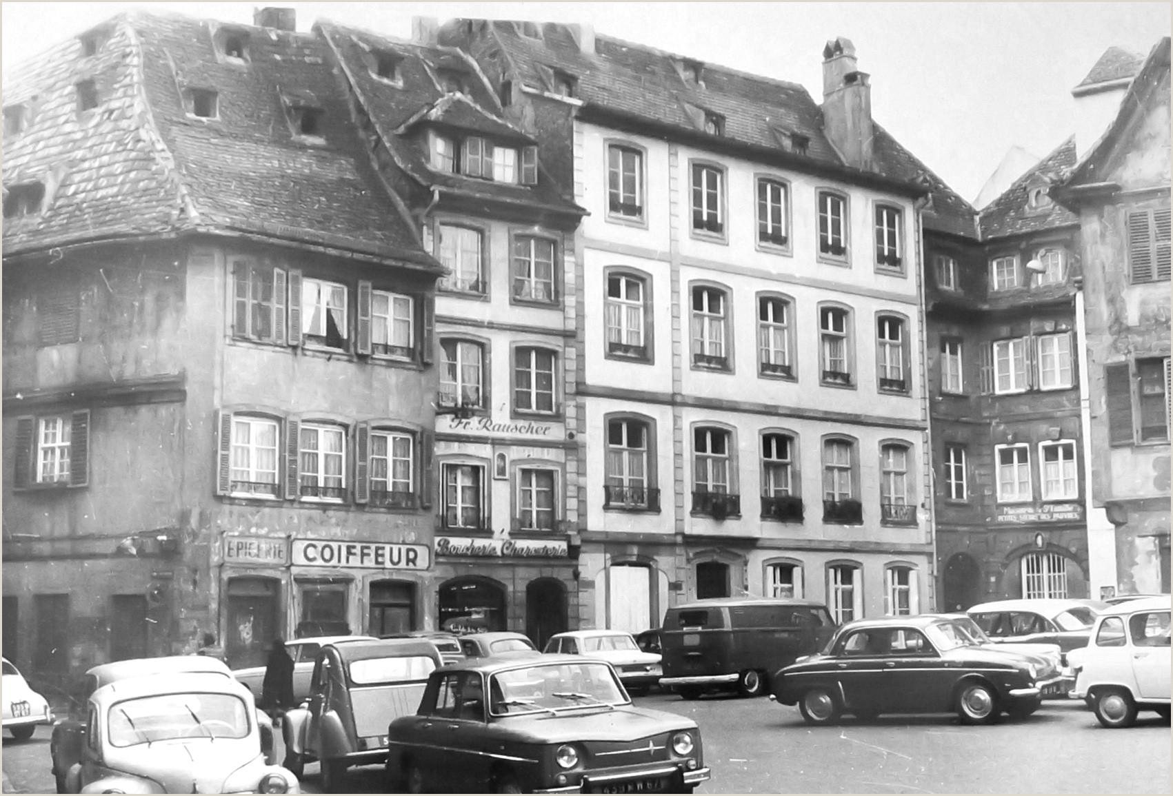Curriculum Academico Simples Maisons De Strasbourg Résultats De Recherche Place