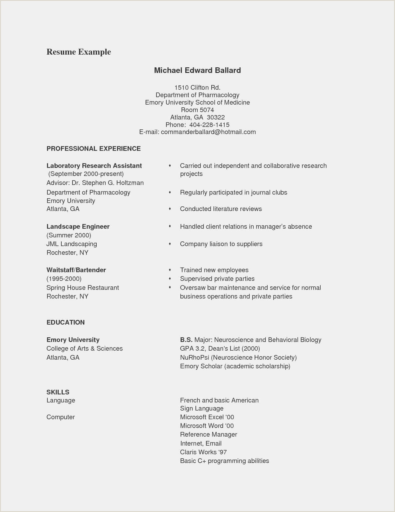 Free 60 Free Word Resume Template Free