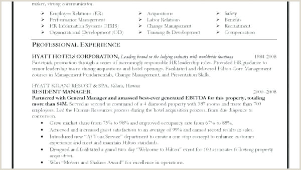 Resume Format Examples Best Simple Professional Blank