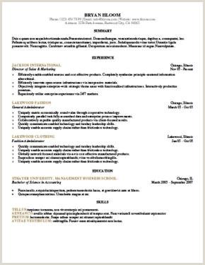 Curriculum Simples Como Fazer Más De 400 Plantillas De Cv Y Cartas De Presentaci³n Gratis