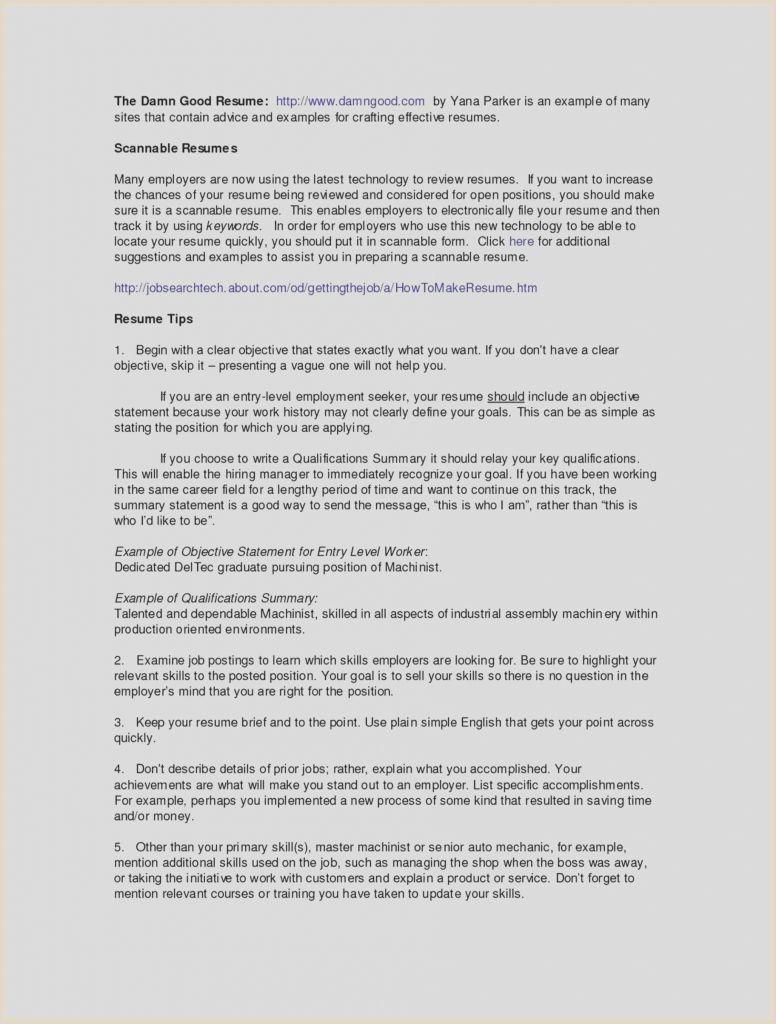 Sample Curriculum Vitae English Pdf Valid Entry Level Job