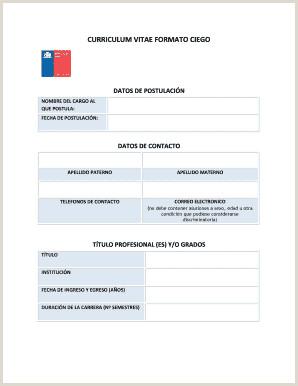 Curriculum Vitae Basico Para Rellenar Gratis Curriculum Vitae formato Word Edit Line Fill Out