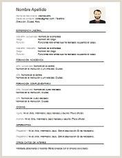 Modelo De Curriculum Vitae Nuevo Modelo de Curriculum Vitae