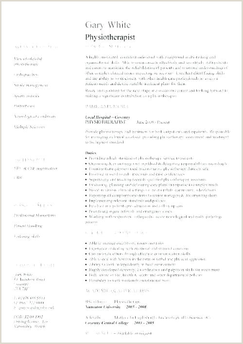 Curriculum Vitae format Doc for Freshers Curriculum Vitae Template Doc format Doctor Example