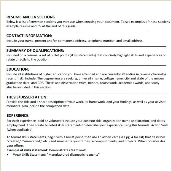 Curriculum Vitae format Download In Ms Word for Fresher Student Cv Template