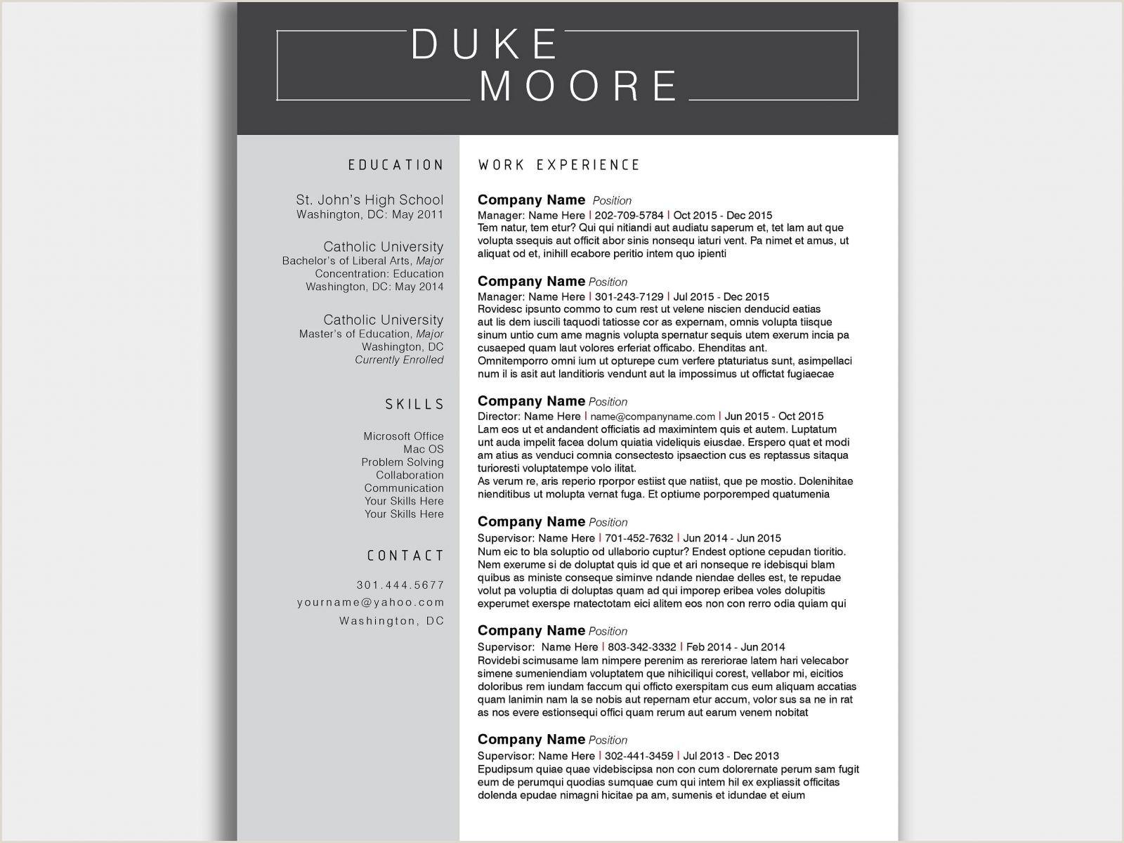 Curriculum Vitae Sample Pdf Format Valid Curriculum Vitae Vs