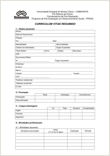 Curriculum Vitae Para Imprimir pletar Gratis