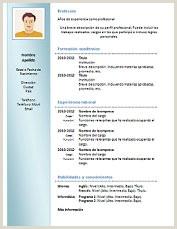 Curriculum Vitae formato Word Para Rellenar Pdf Gratis Modelo De Curriculum Vitae Nuevo Modelo De Curriculum Vitae