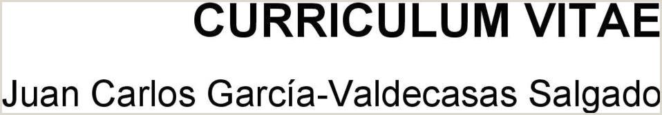 CURRICULUM VITAE Juan Carlos Garca Valdecasas Salgado PDF