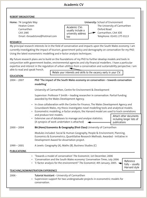 Curriculum Vitae Para Completar Online A Model Cv Serptorpentersdaughter