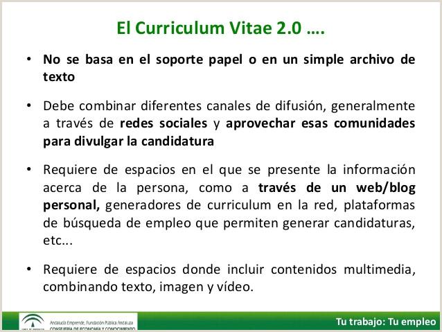 Curriculum Vitae Para Imprimir Y Llenar A Mano Internet Y Bºsqueda De Empleo Cv 2 0