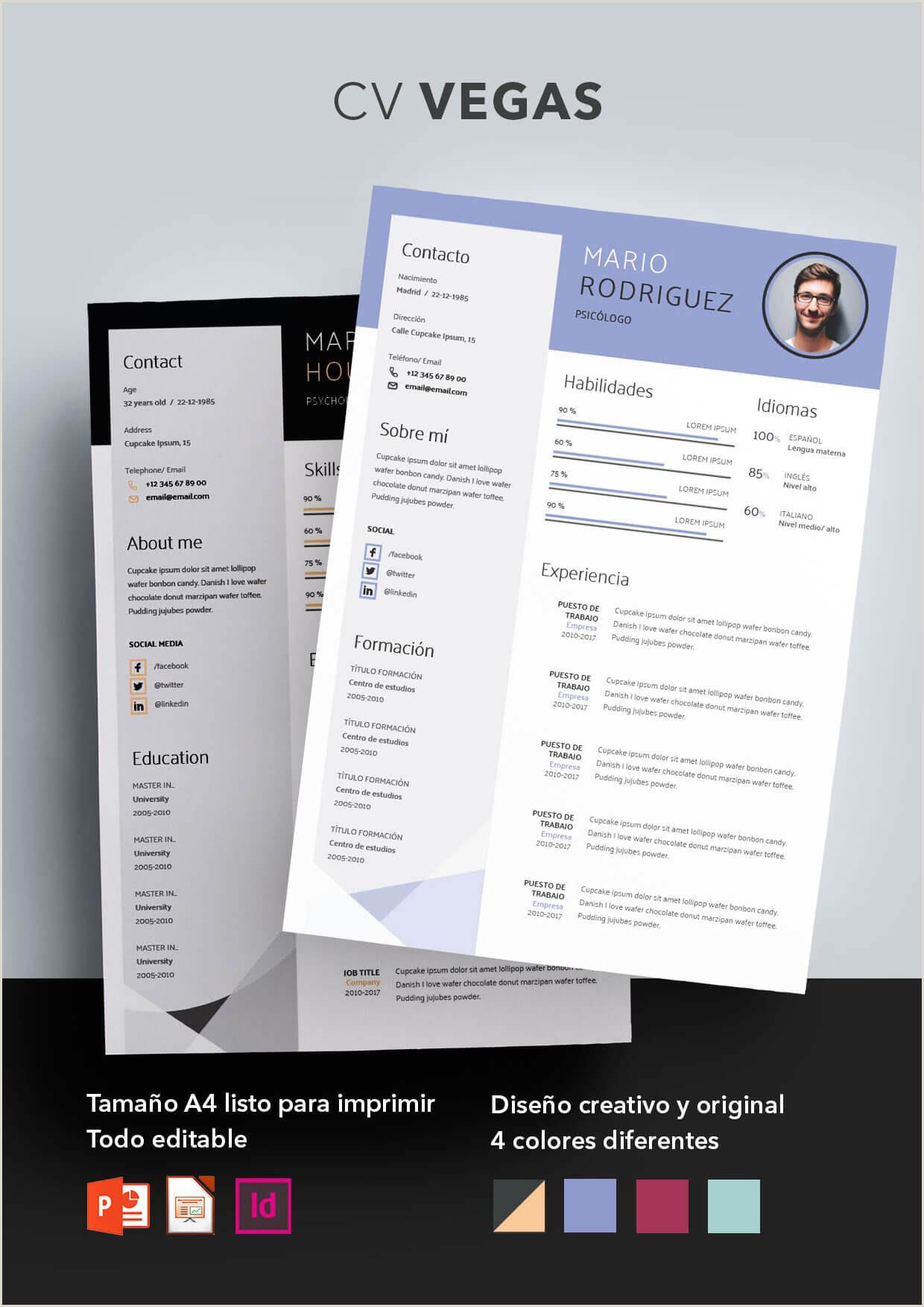 Curriculum Vitae Para Llenar Online Shopcv