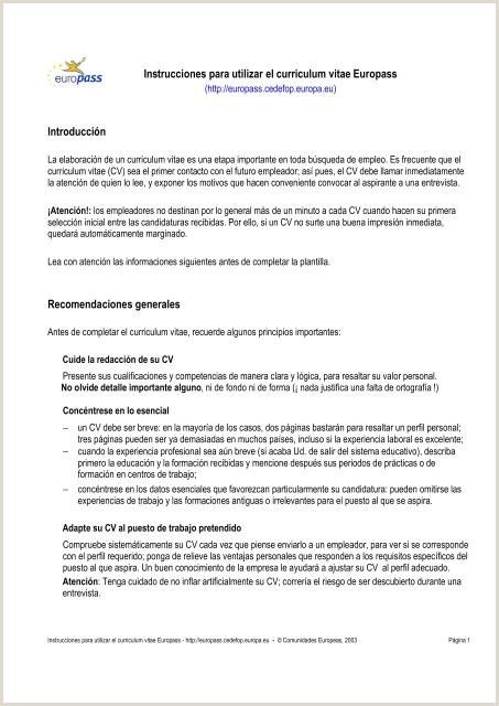 Curriculum Vitae Para Rellenar Descargar Gratis Instrucciones Para Utilizar El Curriculum Vitae Europass