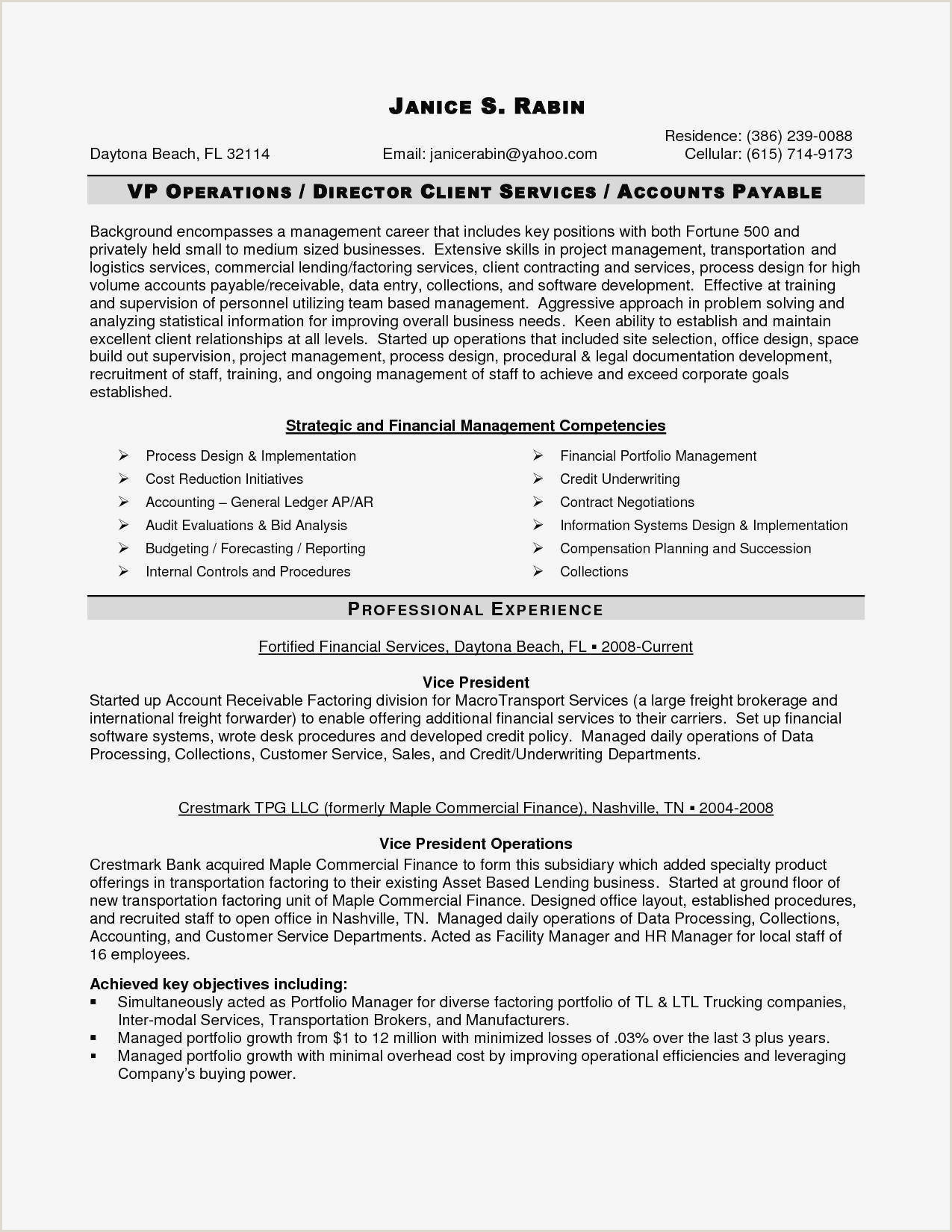 Curriculum Vitae Sample New Curriculum Vitae format
