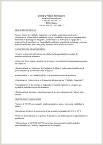 Curriculum Vitae Para Rellenar Gratis 31 Meilleures Images Du Tableau Curriculum Vitae Resume En