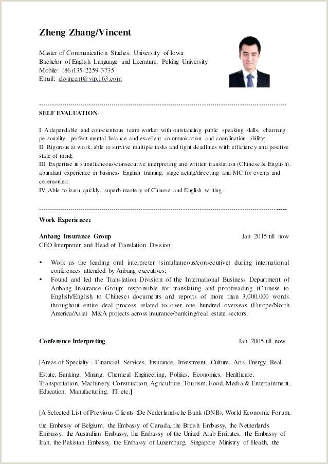 Curriculum Vitae Para Rellenar Imprimir Gratis Mei 2003