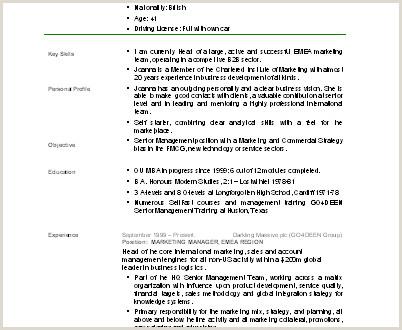 E G Curriculum Vitae Modelo de Curriculum Vitae