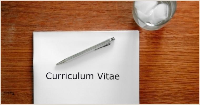 Curriculum Vitae Para Rellenar Online 6 Modelos De Curriculum Vitae Escolha O Cv Certo Para Cada
