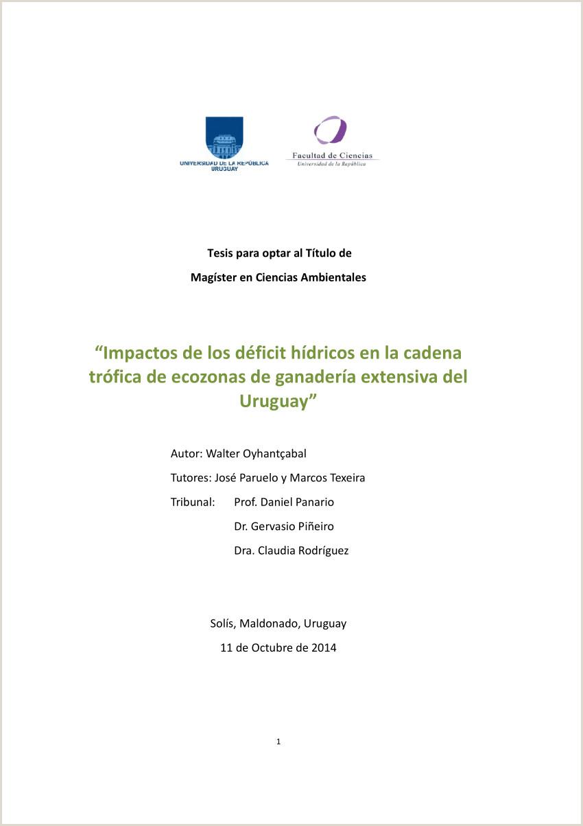 PDF Tesis para optar al Ttulo de Magister en Ciencias