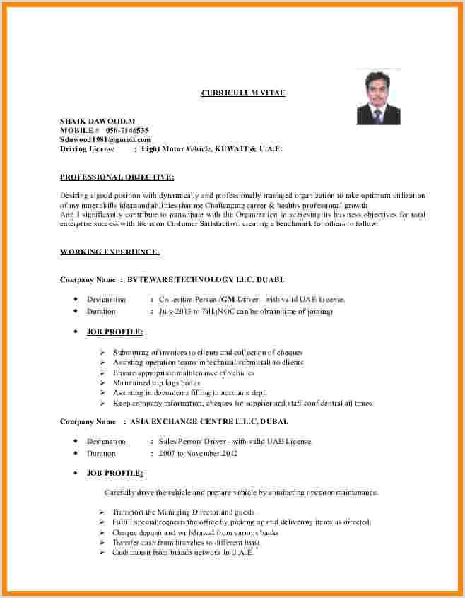 Curriculum Vitae Pdf Para Llenar Gratis 9 Curriculum Vitae Driver