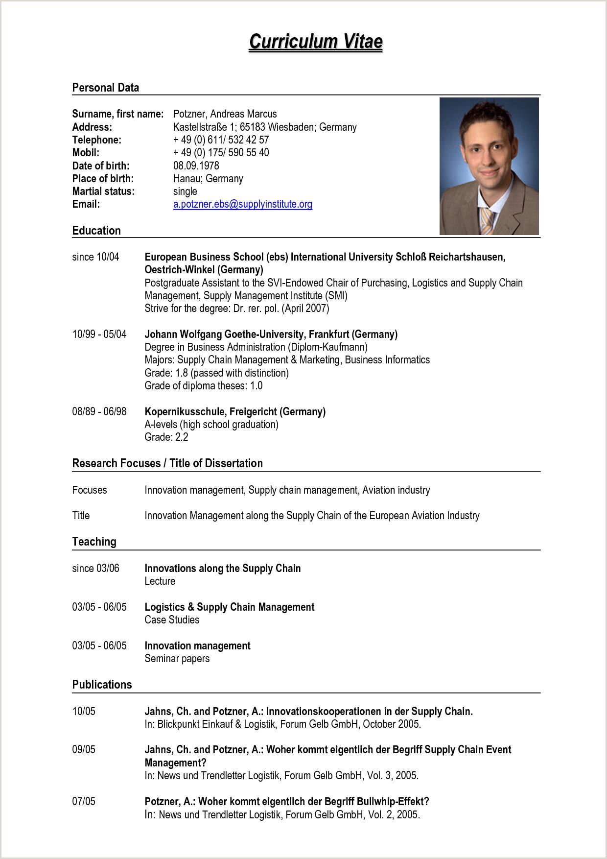 professional curriculum vitae format pdf – guatemalago