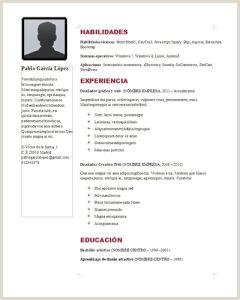 Curriculum Vitae Plantilla Para Rellenar E Imprimir Curriculum Vitae Para Mozorpentersdaughter