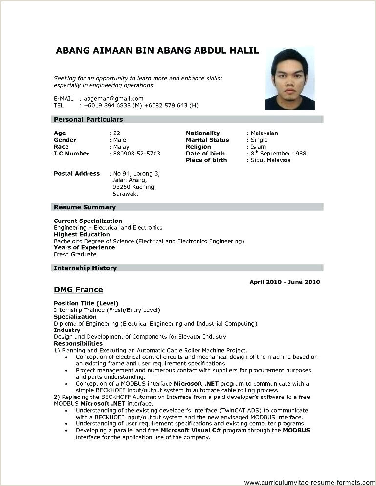 Resume Format Download Latest Chartered Accountant Word