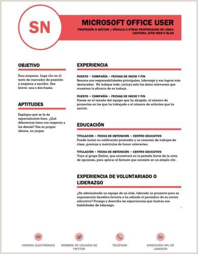Curriculum Vitae Simple Para Rellenar Gratis ▷ Curriculum Vitae Plantilla Word