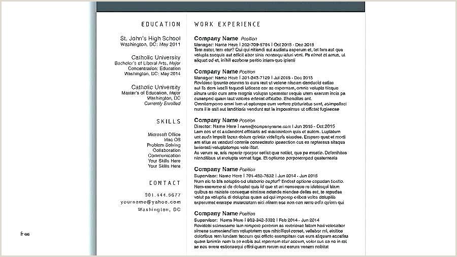 Curriculum Vitae Simples Download Curriculum Vitae Template Word