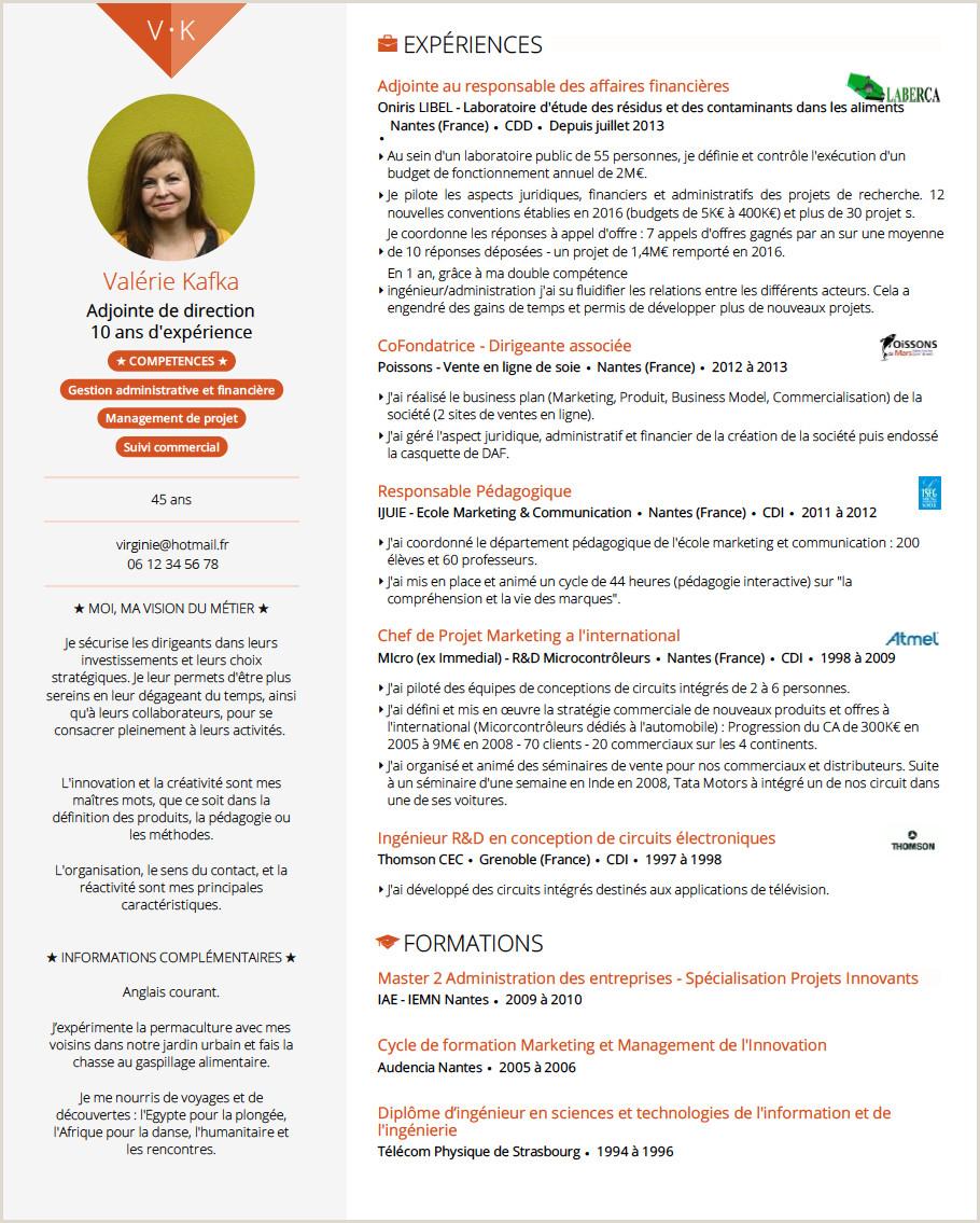 Curriculum Vitae Simples Gratis Doyoubuzz