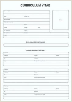 Curriculum Vitae Simples Para Imprimir Modelo De Cv